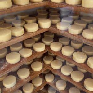 Ostesmaging og vinsmagning hos Countryside Break