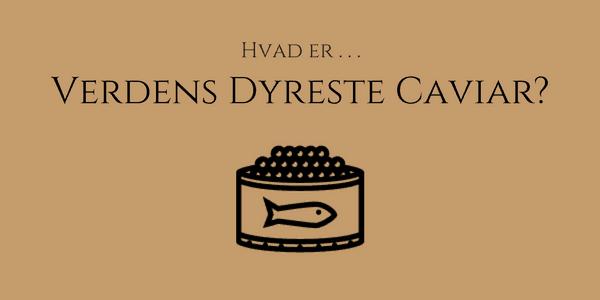 Caviar priser – Hvad er er verdens dyreste caviar?