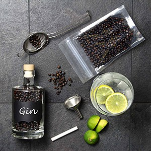 hjemmebryggerens gin kit